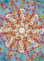 Preview: Fototapete HAPPINESS 184x254 Blumen Blütenstern grafisch weiss pink orange rot