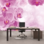 Mobile Preview: Vlies Fototapete 407 - Orchideen Tapete Orchidee Tropfen Rosa Wellness lila lila