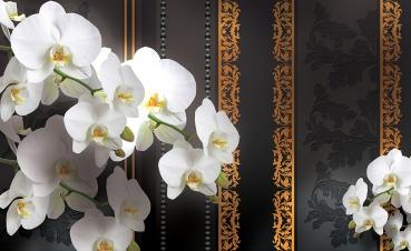 kiss fototapeten zu besten preisen fototapete no 2736 vliestapete orchideen tapete. Black Bedroom Furniture Sets. Home Design Ideas