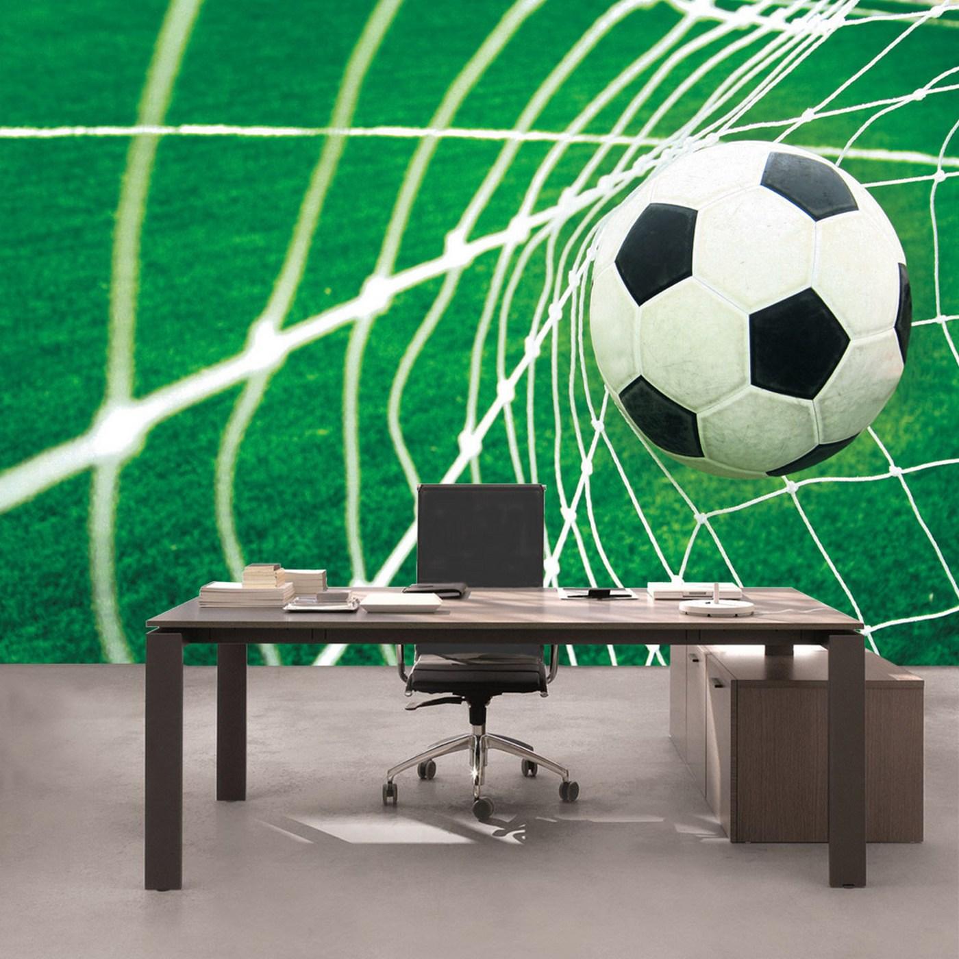 Vlies Fototapete 272 - Fußball Tapete Fussball Netz Wiese grün